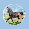<span>ergobag Motiv: Pferde</span>
