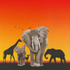 <span>McNeill Motiv: Africa</span>